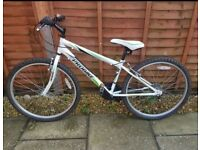 "BOYS 14"" MOUNTAIN BIKE. FANTASTIC CONDITION"