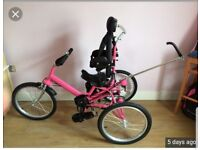 Pink special needs Tomcat tricycle