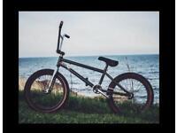 Custom built BMX bike
