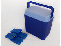 COOLBOX with 4 ICE PACKS Cooler Box Camping Picnic Food Insulated Travel Blue
