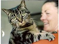 Enthusiastic and committed animal lovers wanted for London's premier pet care business