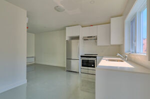 BRAND NEW village - $1200 / 1br - 500ft2 - Bright and new!