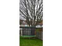 Free on dismantle & collection 10ft Trampoline was £100 new, been used for one summer only.