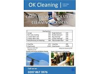 Professional Total Cleaning Service
