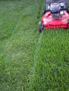 (Great Prices) Hamilton Area Lawncare/Property Maintenance