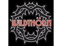 Bass Player wanted for rock band Wild Thorn aged 18-30