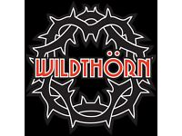 Lead Guitarist wanted for Newcastle based rock band Wild Thorn Aged 18-30