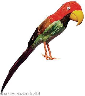 Herren Damen Feder Papagei Vogel Piraten Kostüm Kleid Outfit Zubehör Requisit