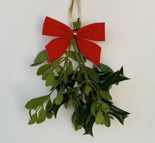 Live Mistletoe AND Holly - fresh cut for the Holidays