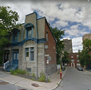 Mcgill Ghetto Sublet/Lease Transfer 2 br available
