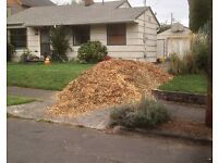 Free Wood Chip Approx 2m3 can deliver within reasonable distance of Abergavenny