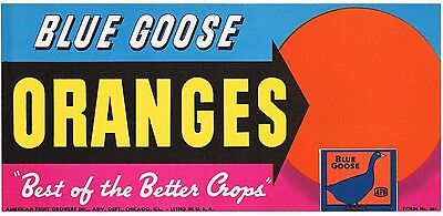 ORANGE CRATE LABEL RARE HALF BOX BLUE GOOSE C1950  CITRUS CHICAGO GRAPHIC DESIGN - Orange Crate Label