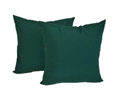Set of 2 - In/Outdoor Square Throw Pillows - Solid Forest Gr