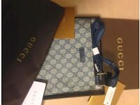 Gucci bag pouch new