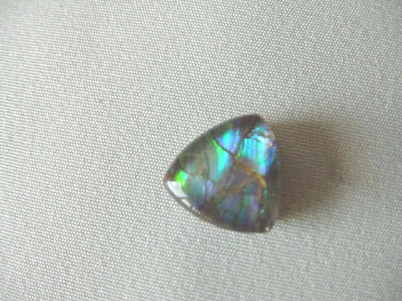 (J-491) triangle Green blue Ammolite fossil shell cabochon nautilus for jewelry