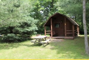 5 cabins for rent!