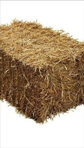 Small straw bales for sale