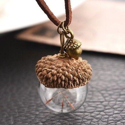 Halskette Lederkette Pusteblume Herbst Natur Nuss Anhänger Damenkette Halsband