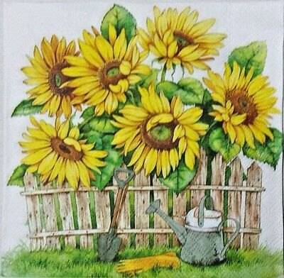 SUNFLOWER GARDEN 2 single LUNCH SIZE paper napkins for decoupage 3-ply
