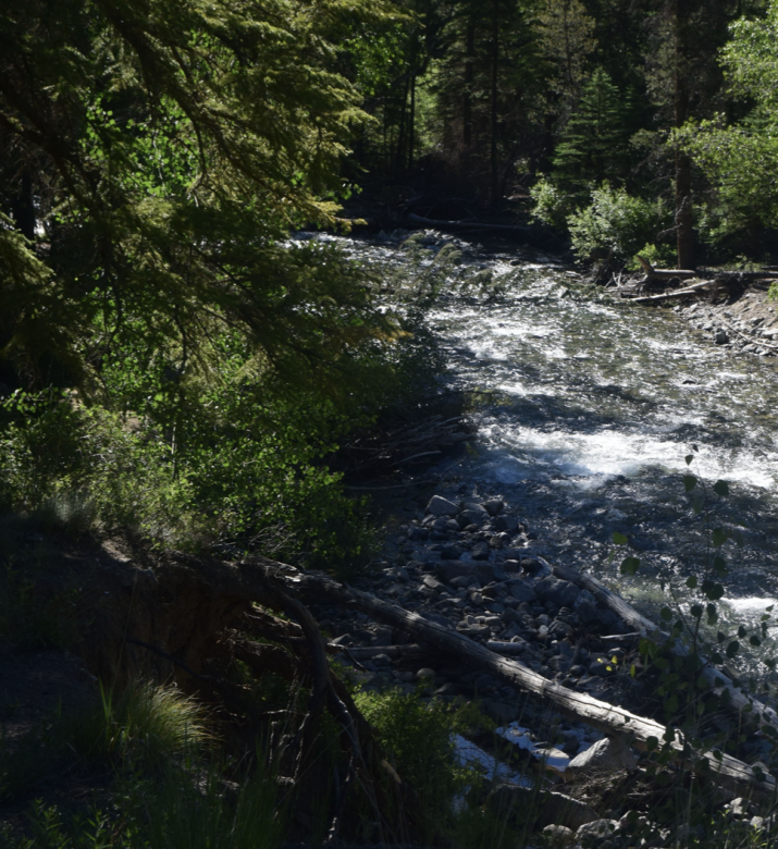 20 ACRE CHAFFEE COUNTY COLORADO GOLD MINING CLAIM PLACER  - $1,225.00