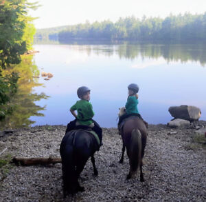 Bring Your Horse To Camp Kids Camp! Ottawa Valley