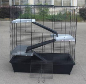 Cage wanted for rats
