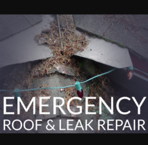 Roof Repair / Rooftop Snow Clearing Service ! call/text 204-451-