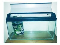 30 inch Fish Tank and accessories GREAT CONDITION
