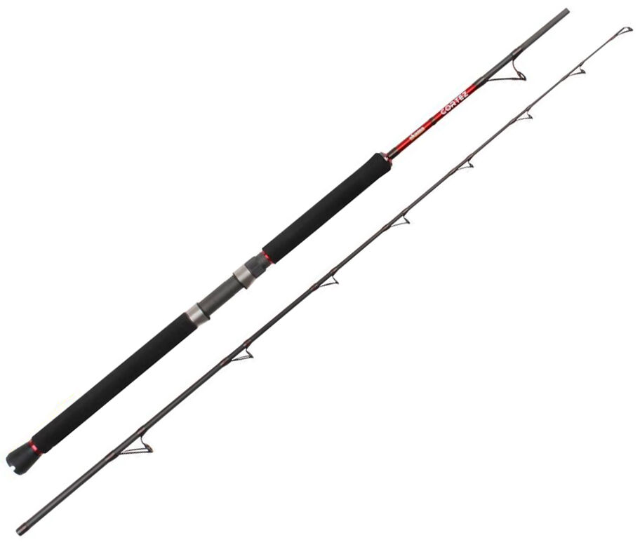 top 10 sea fishing rods | ebay, Fishing Reels