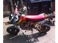 Road legal pit bike