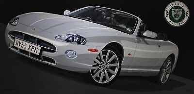 Jaguar XK8 4.2 S Convertible' A3 Limited Edition Print by Mark Roberts segunda mano  Embacar hacia Spain