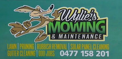 Wylie's Mowing & Maintenance