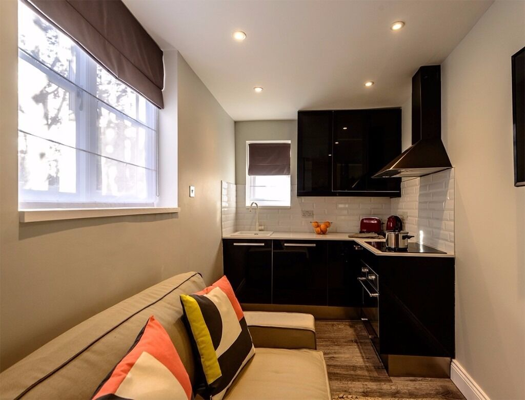 Brand new one bedroom - 10' from Baker Street - available in January (113 1)