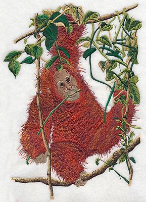 "Orangutan, Baby, Gorilla, Monkey, Primate, Embroidered Patch 7.6""x 10.7"""