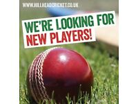 Hillhead Cricket Club - New Players Required