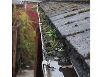 Roof Cleaning and Maintenance - Moss, Gutter, Mortar Repointing - Starting from £100