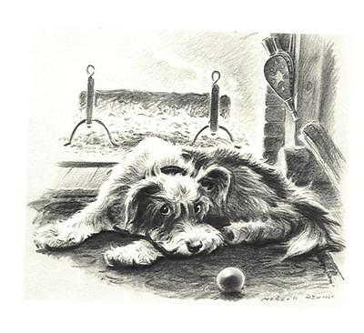 Mutt Mat - Mutt - Morgan Dennis Dog Print - MATTED