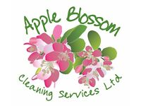 Specialized Cleaning Technician