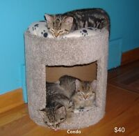 $40 · New Cat Beds for Sale.