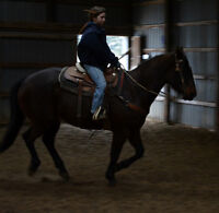 Looking for part time position as exercise rider/stable hand