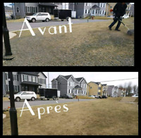 Tonte de pelouse/ Nettoyage gravier