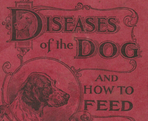 1897 Diseases of the Dog And How To Feed-H Clay Glover-Veterinary-Lewiston Maine