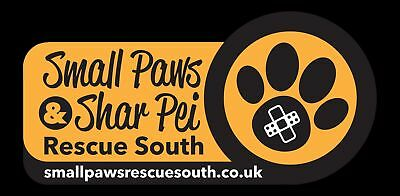 Small Paws Rescue South