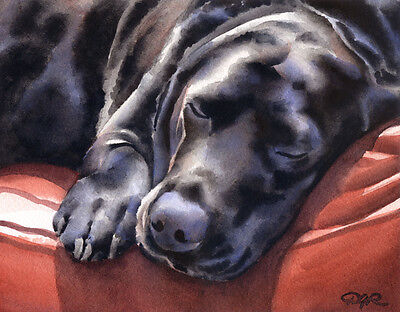 """BLACK LAB SLEEPING"" Watercolor Dog ART Print Signed by Artist DJR"