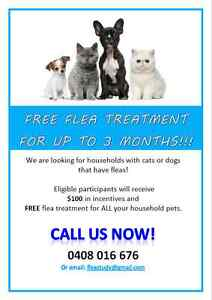 FREE Flea Treatment for Rockhampton Cats and Dogs! Rockhampton Rockhampton City Preview