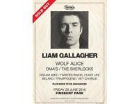 2 x Liam Gallagher Finsbury Park tickets