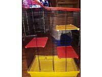 Bird, rat, hamster cage