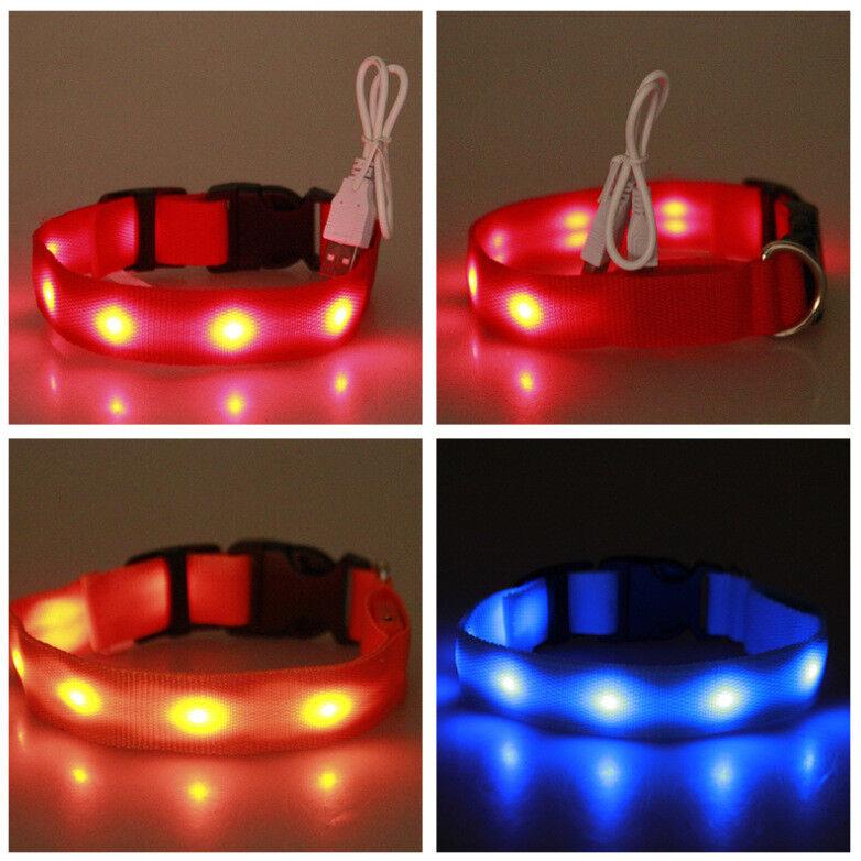 LED Hund Leuchtend Halsband Leuchthalsband USB Sicherheitshalsband Neopren HH01