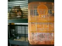 Syrian Hamster + 2 cages + Accessories. 4mths old, Male