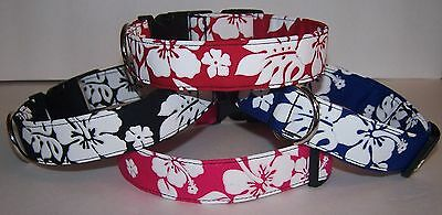 Wet Nose Designs Hawaiian Print Dog Collar Tropical Hibiscus Blue Red Pink Black Designer Hawaiian Dog Collar